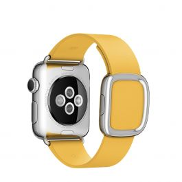 Apple 38 mm Modern Buckle