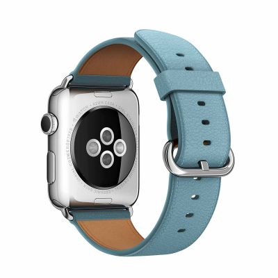 Apple 42 mm Classic Buckle - Blue Jay