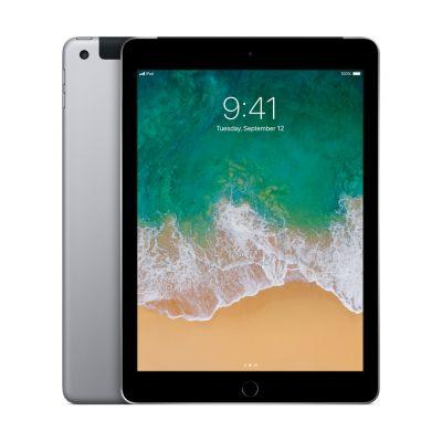 iPad Wi-Fi + Cellular 128 GB - Space Gray